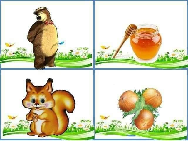 cu ce se hranesc animalele 6.jpg