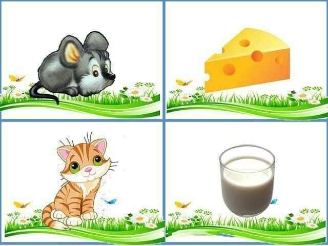 cu ce se hranesc animalele 7.jpg